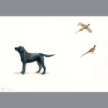 Black Labrador & Pheasant Bone China Dog Bowl