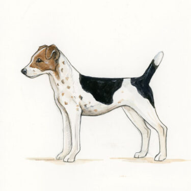 Parsons Terrier Bone China Dog Bowl