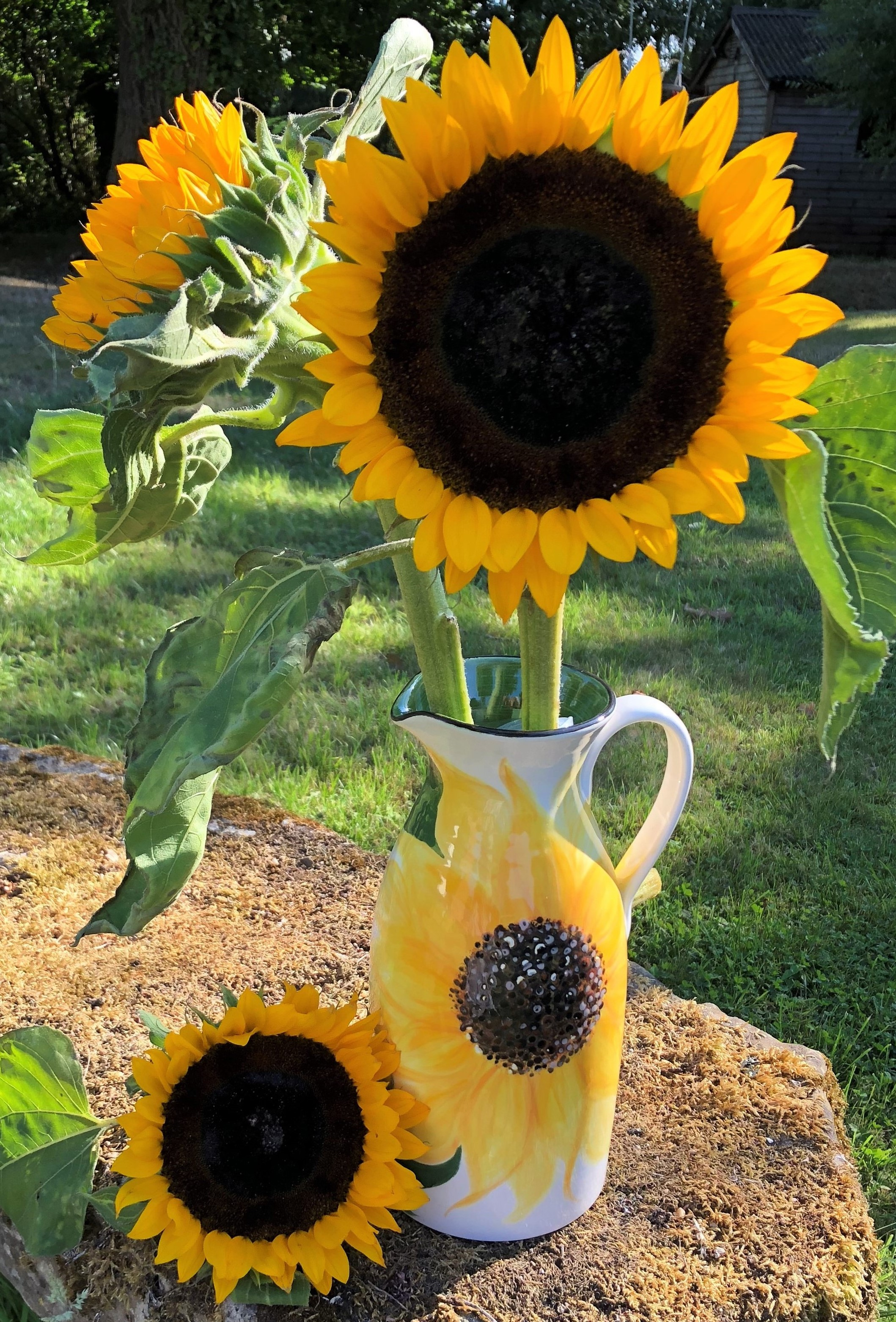 Sunflower Tall Jug