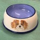 A small dog bowl for Ruby the King Charles Spaniel