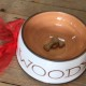 Bespoke Pottery Dog Bowl